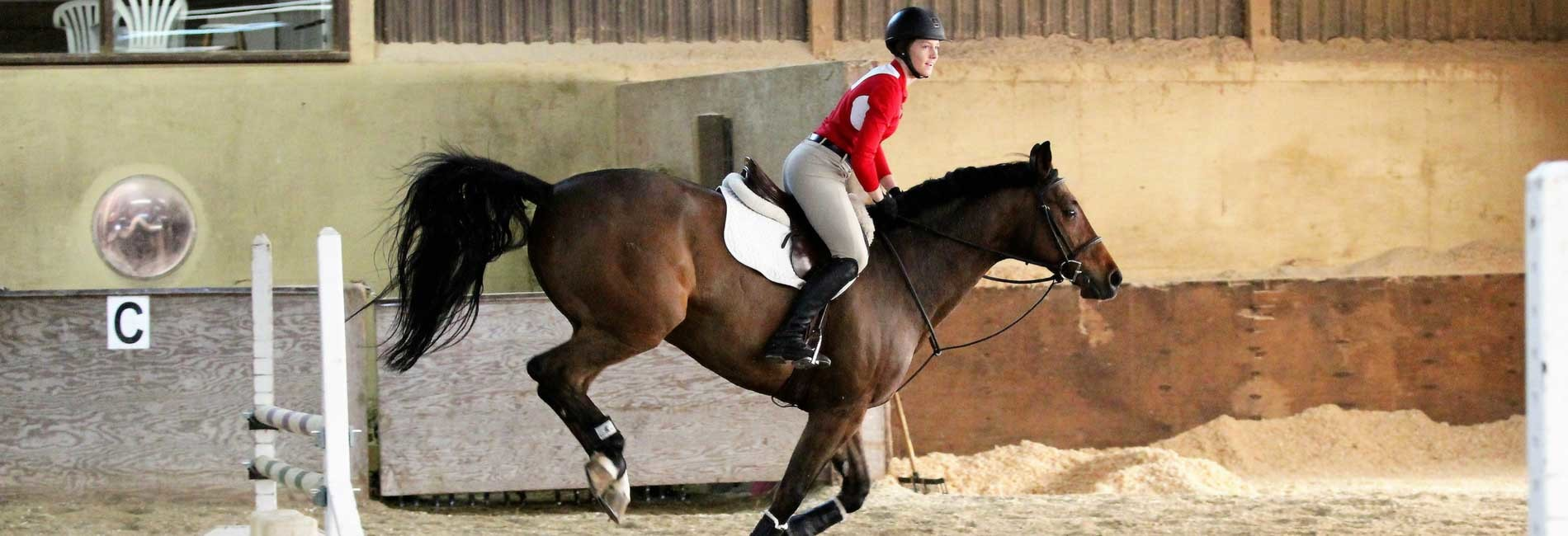 Standard swscd   equestrian  1   activity banner image  1900x650