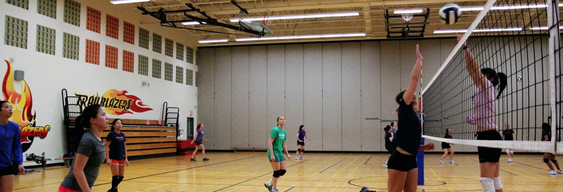 Standard swscd   volleyball  2   activity banner image  1900x650