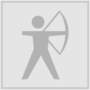 Icon archery