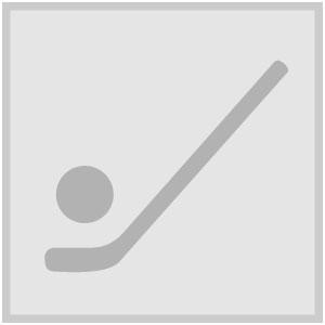 Icon ballhockey