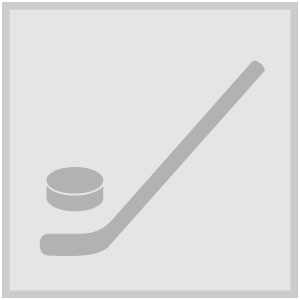 Icon icehockey