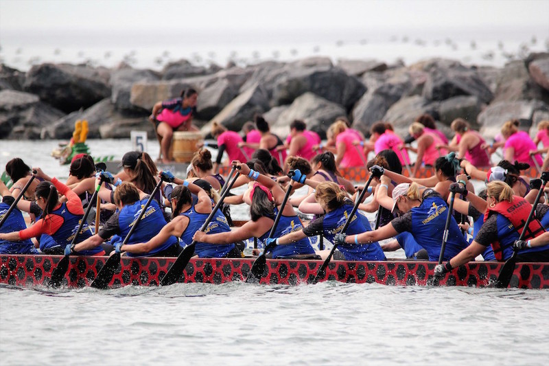 Content dragon boat race   marilyn bell park   toronto   july 15 17   pic  13