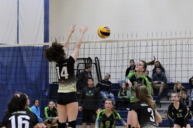 Content ova volleyball provincials   rim park   waterloo   friday   pic  31
