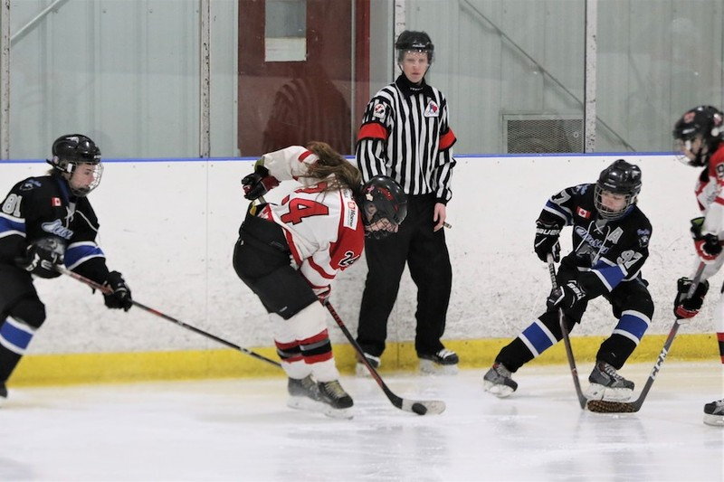 Content courtney    cassidy   ice hockey referees   sisters   pic  7