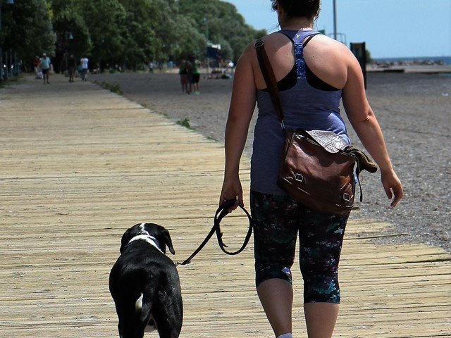 Thumb walking on the boardwalk  4   beaches   toronto 2016