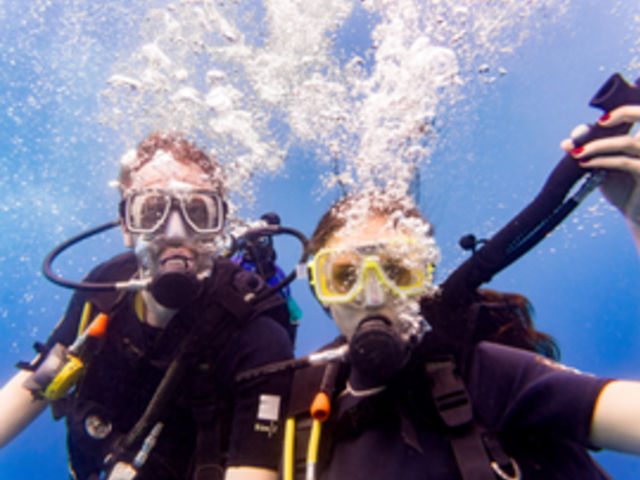 Thumb canada s top spots for scuba diving