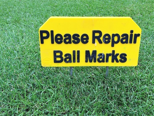 Thumb repair ball marks sign   pic  1   by the green