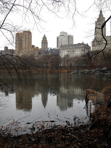 Thumb walking new york city   pic  32