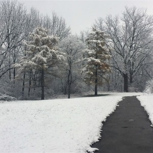 Thumb first snow fall   winter walking in the hood   pic  1a